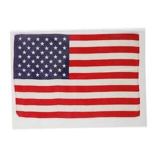 [APOLLO 10]. FLOWN ON APOLLO 10. LARGE UNITED STATES OF AMERICA FLAG