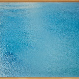 RICHARD MISRACH | UNTITLED #833-02 (FROM ON THE BEACH)
