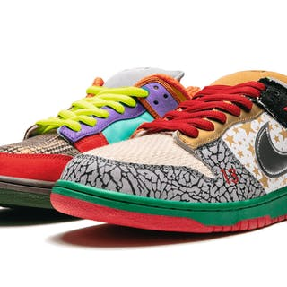 NIKE | SB WHAT THE DUNK | SIZE 10