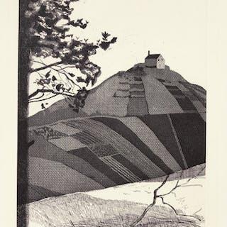 DAVID HOCKNEY, R.A. | A WOODED LANDSCAPE (S.A.C. 75; MCA TOKYO 72)