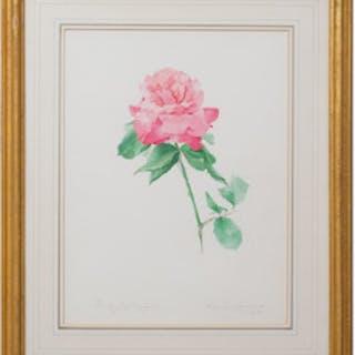 Valentine Lawford:  Rose: Color Magic