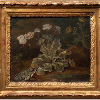 Attributed to Franz Michael Von Purgau (1677-c. 1751):  Frog and Dandelion