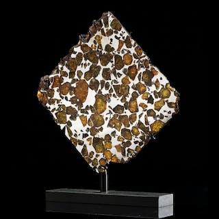 Tranche de météorite pallasite Esquel
