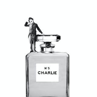 DAY-Z - CHARLIE BOTTLE