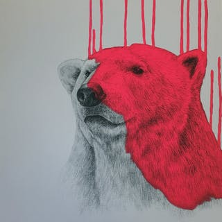 MCNAUGHT Louise - Hey There, Polar Bear - Neon Pink