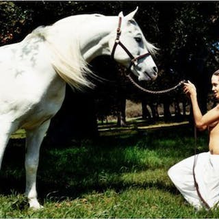 Angelina Jolie with horse in meadow