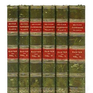 Baxter, W: British phaenogamous botany, in 6 volumes.