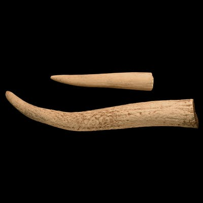Stone Age Antler Tool Pair