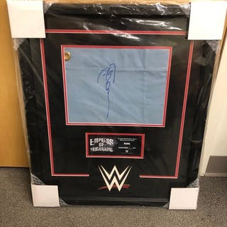Asuka Signed & Framed Ring Canvas Plaque (#1 of 6)