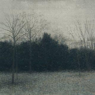 Nevando en Kungs-Parken - Miguel Galano