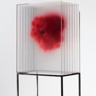 Rojo - Isabel Alonso Vega