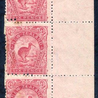 1902-07 6d Kiwi