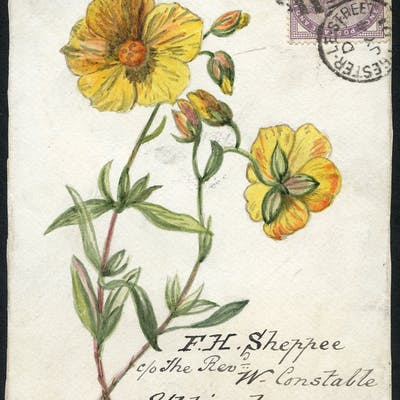 1891 hand painted water colour (flower) cover front, 1d lilac, Chester
