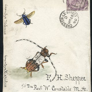 1890 water colour (two insects) cover front, 1d lilac, Chester Le
