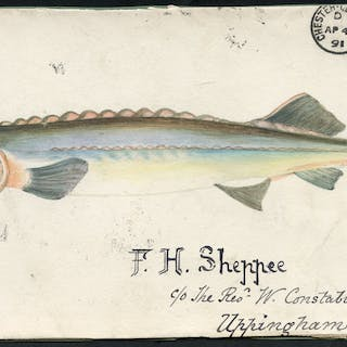 1891 hand painted watercolour (Huso fish) cover front, 1d lilac, Chester