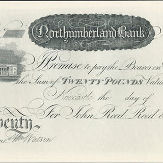 Newcastle, Northumberland Bank £20, dated 18XX