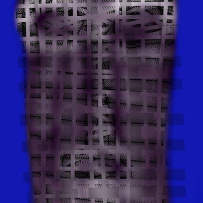 Pensées sous les burqas bleues - Evelyne Huet