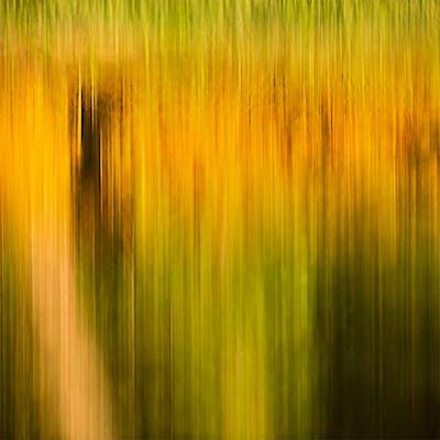 Illusion in color IX - Isabelle et Amar Guillen