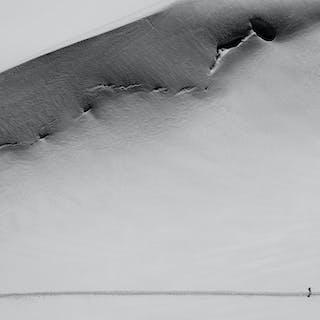 Two And A Whale , 2016 - Nataliya Andrianova