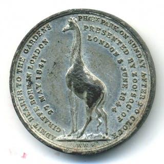 Ireland, Royal Zoological Society of Ireland