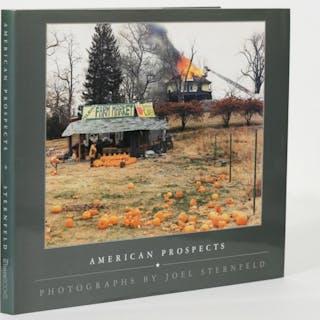 American Prospects - Sternfeld, Joel.
