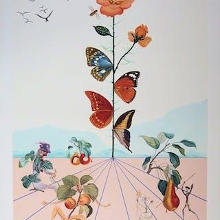 Salvador DALI - Flordali II, La rose papillon, 1981, Lithographie