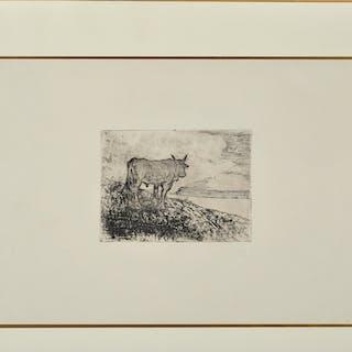 Giovanni FATTORI - Toro, 1925, gravure sur zinc