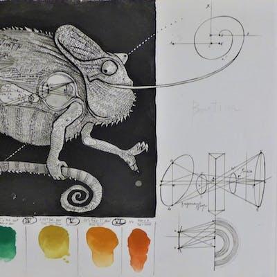 Pierre-Yves TREMOIS - Bestiaire solaire, Le Caméléon - gravure