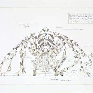 François DELAROZIERE - L'araignée géante, lithographie originale signée