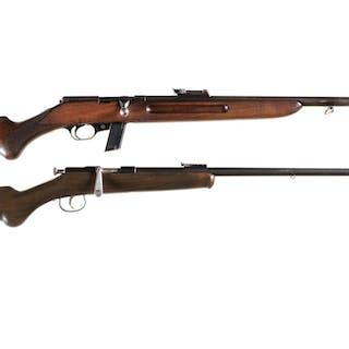 Two German Rifles