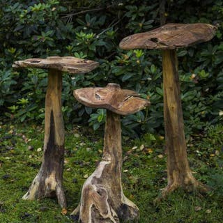 Mushroom Set