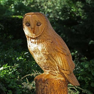 Owl by Ant Beetlestone