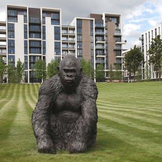 The Olympic Gorilla